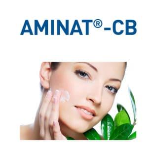 Ethyl Lauroyl Arginate, Glyceryl Caprylate, Propanediol, Glycerin conservante cosmetica aminat